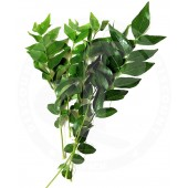 Curry leaves fresh 40g