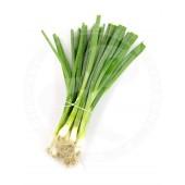Spring onions fresh 100g