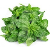 Basil leaves fresh 100g