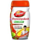 Chyawanprash NO SUGAR 500g...